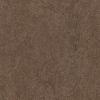 Forbo Marmoleum- Walnut