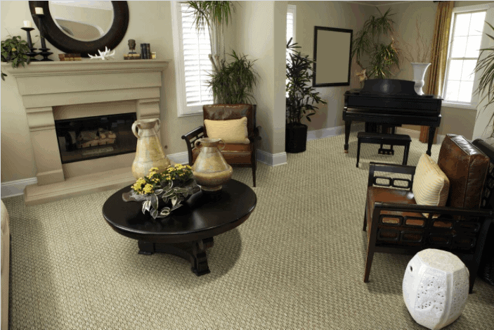 Dmi Seagr Carpet Rugs