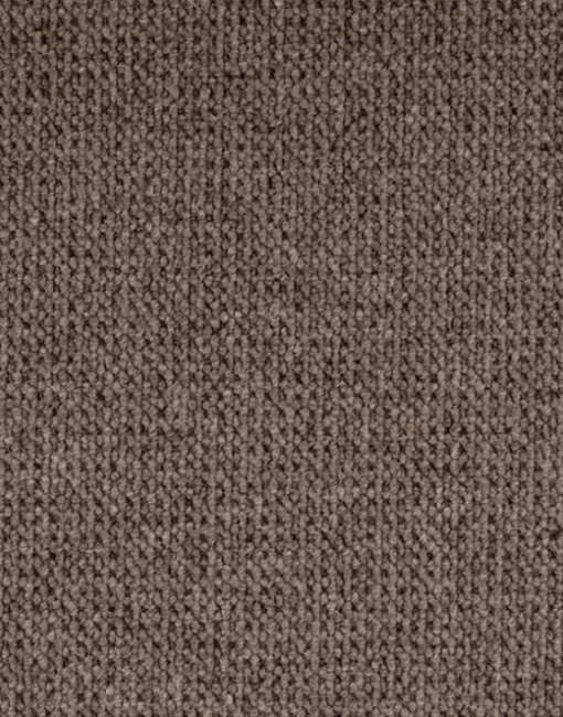 Nature's Carpet Bern - Fossilized