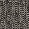 Nature's Carpet Paragon- Margarite