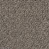 Nature's Carpet Rendezvous- Dark Grey