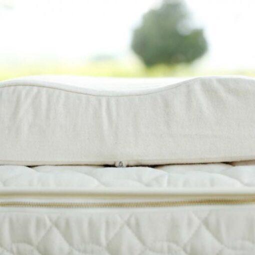 Savvy Rest Organic Latex Contour Pillow