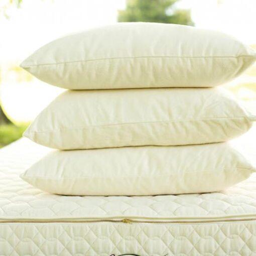 Savvy Rest Wool Pillow