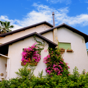 NTE Podcast: Buying an Older Home