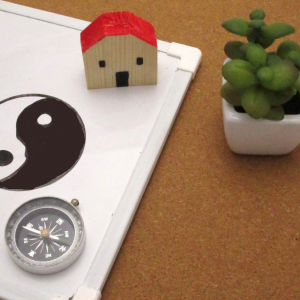 NTE Podcast: Adopting principals of Feng Shui to make your home a healthier space!
