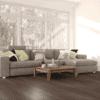 Wood Wise - Dark Forest Oak